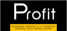 Programa PROFIT